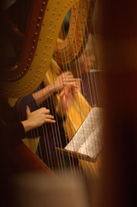 Closeup of harps in concert