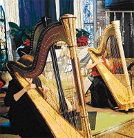 Bay Area Holiday Harp Concert Ensemble